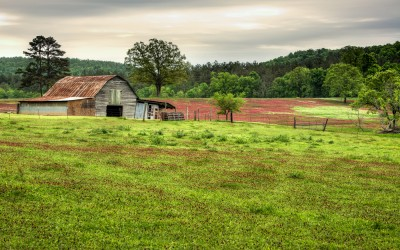 Clover Field and Barn