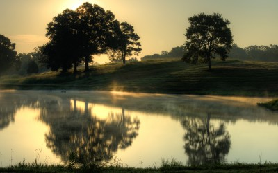 Golden Pond Sunrise-29