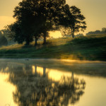 Golden Pond Sunrise-26